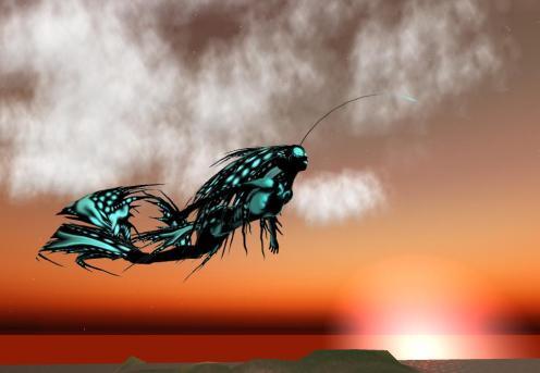 nish fish2_001
